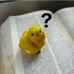 はてなブックマークとは?ブログのアクセスアップに?twitterとの連携方法も!